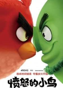 愤怒的小鸟(国语)