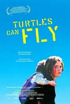 说电影《乌龟也会飞》